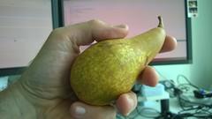 pear, green, fruit, food,