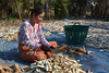 Khmer Woman Chopping Cassava Root