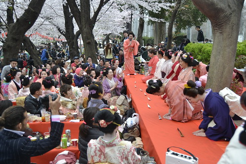 Festival Hanami - Parque Ueno Tóquio 2016
