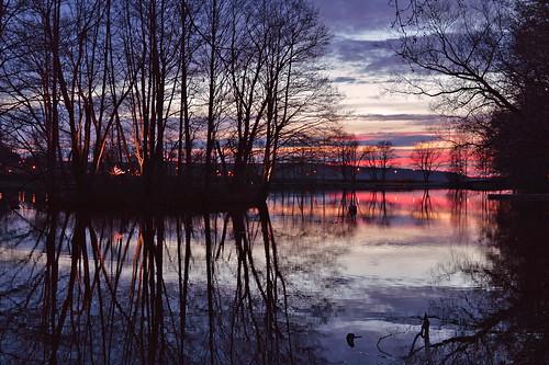 trees sunset sky lake nature water colors clouds reflections suomi landscape evening spring nikon colorful flickr explore maisema vesi ilta luonto waterscape järvi auringonlasku nikond3200 kevät puut taivas heijastukset explored d3200 järvimaisema inexplore