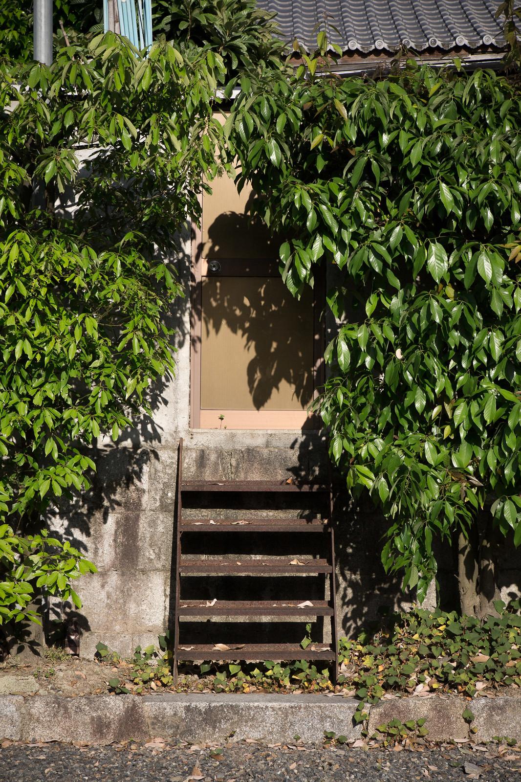 塀と階段と扉