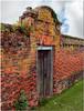 Gate and Brick Wall