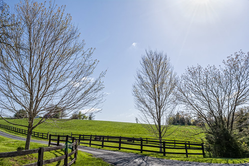 plant tree field fence virginia us unitedstates structure land staunton