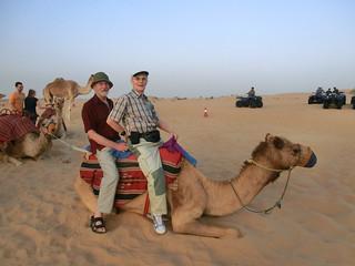 Dubai mit dem Kamel durch die Wüste 6512
