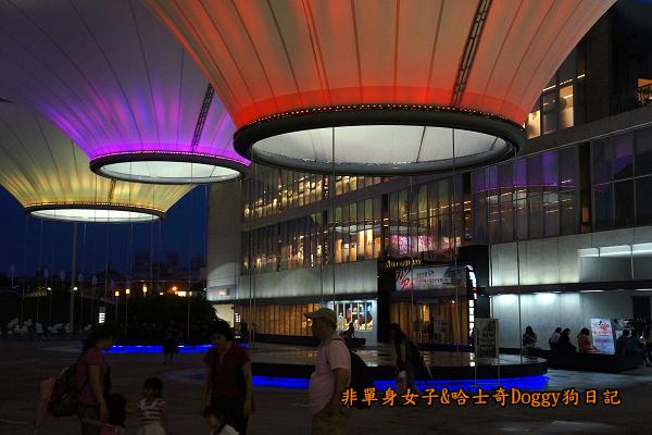 高雄大東文化藝術中心26