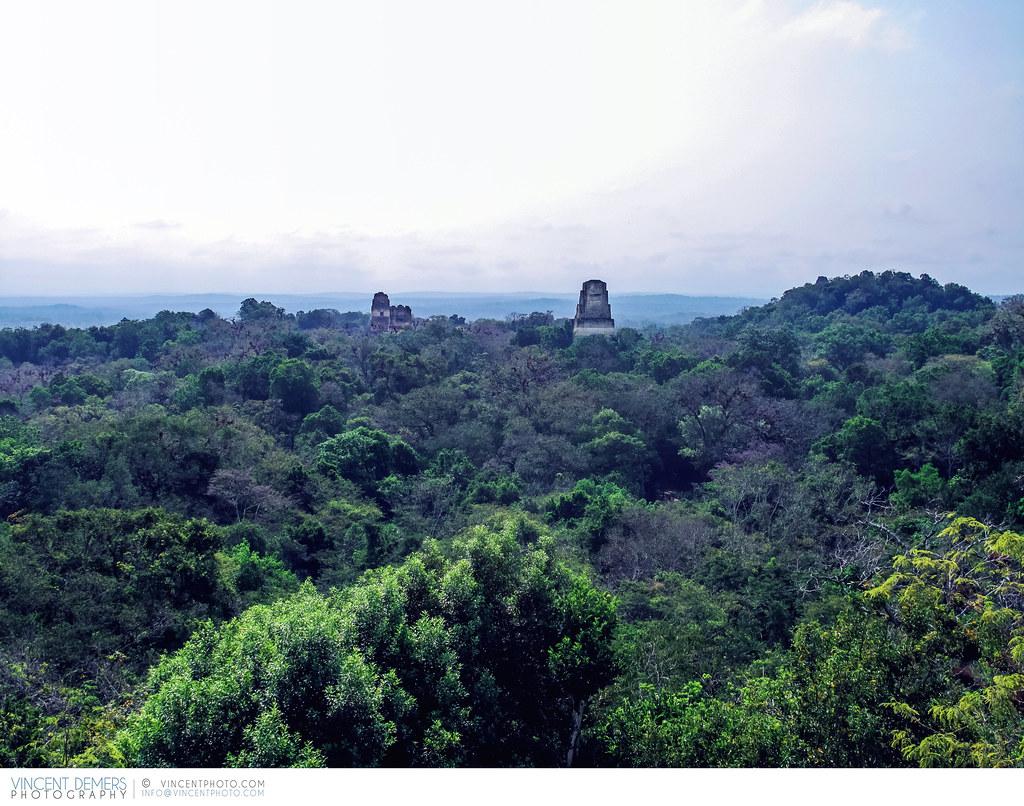 Hotels Near Tikal Guatemala