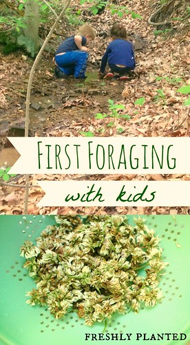 First Foraging With Kids | Freshly Planted