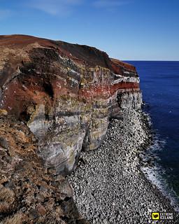 Bird Cliffs of Krýsuvíkurberg