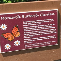 I was happy to see this Eagle Scout project supporting #pollinators along the W&OD Trail in Leesburg, Virginia. @NVRPA @NVRPAGilbert