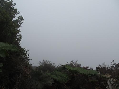 Volcan Poas: quelle chance, le cratère est dans le brouillard total !