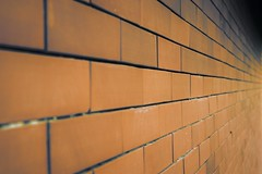 Brick Line
