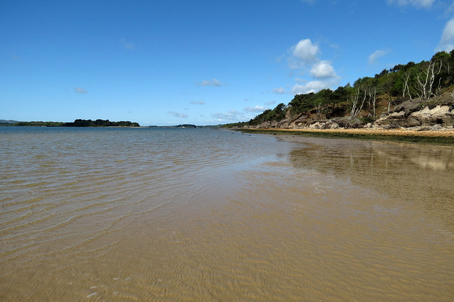 Beach on Brownsea Island