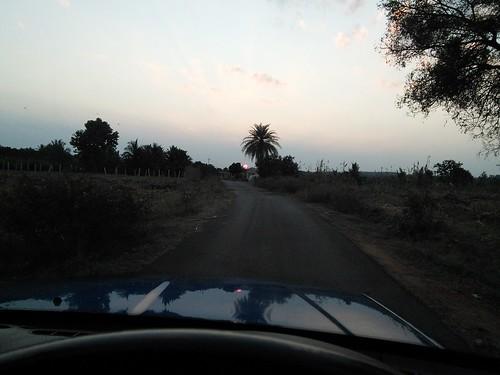 sunset nature landscape bangalore shanthidhama sunsetinbangalore sonnenahalli shantidhama challahalli