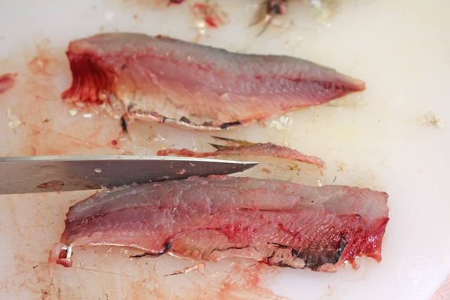 Tostas Salmorejo, sardinas marinadas y caviar de aove www.cocinandoentreolivos.com (2)