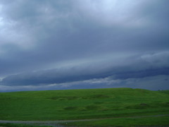 vine ploaia/comes the rain