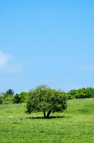 sky vermont unitedstates places northamerica partlycloudy lyndonville smcpda55300mmf458ed pentaxk5 chandlerpondfarm