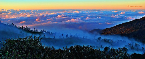 sky cloud sunlight mountain plant banyuwangi