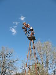 Windmill On A Pretty Day
