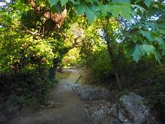 Η κοιλάδα της Ψίνθου μετά τον δεύτερο καθαρισμό