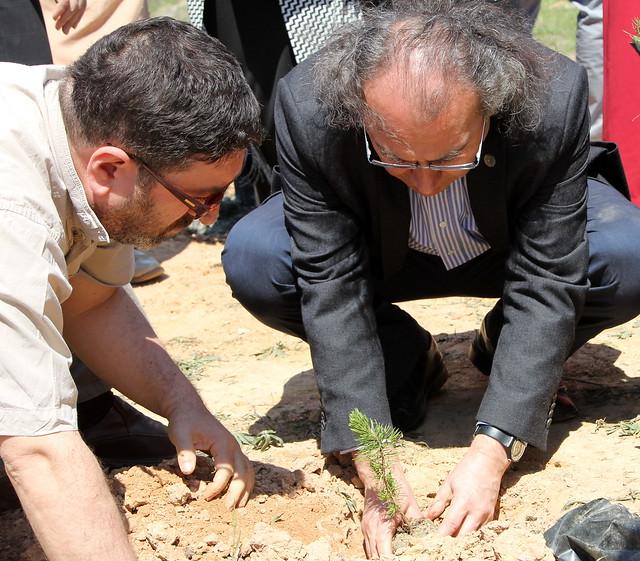 Üsküdar Üniversitesi Hatıra Ormanı Oluşturuldu