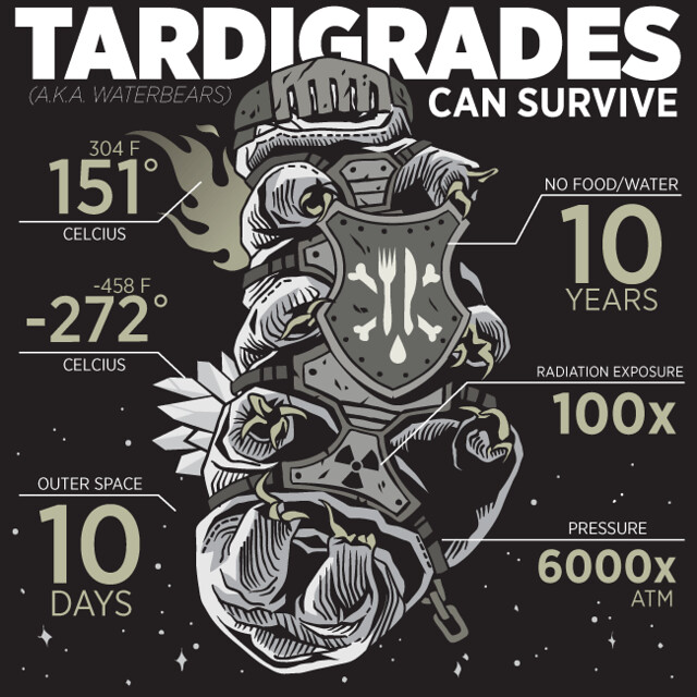 Tardigrades (aka waterbears) can survive!