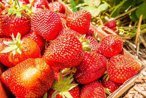 strawberries in natural background