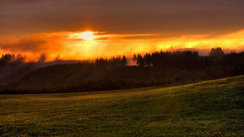 sunset field grass clouds forest germany cochem vapour greatphotographers kingfisherimages