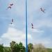 Voladores de Papantla (3/3) por Juan Ig. Llana