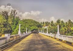 Road that needs to be taken. #roadtrip #road #traveldiaries #natgeotravel #natgeo #indiastories #monsoon #rain #lonelyplanet #lonelyplanetindia #lonelyplanettraveller #lonely #colorful #landscape #nature #bgcreativestudios #bridge #countryside