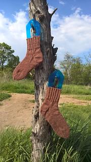 коричневые носки с пяткой подковой | ХорошоГромко.ру