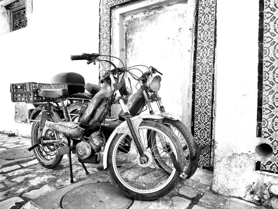 moped x 2