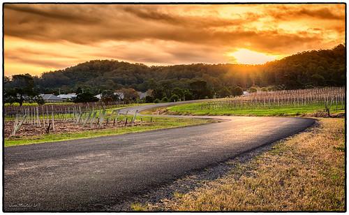 road sunset canon drive vineyard berry curves australia roadtrip tamron hdr coolangatta 6d flickrunitedaward