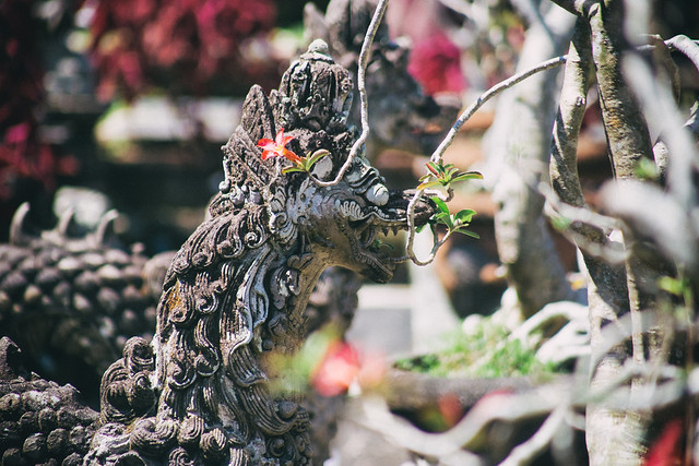 Rhaegar Tarasis  - Smeller of Flowers..