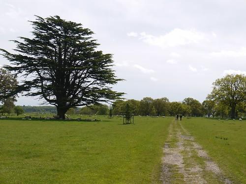 Henley Park