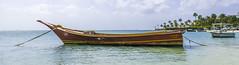Aruba-69