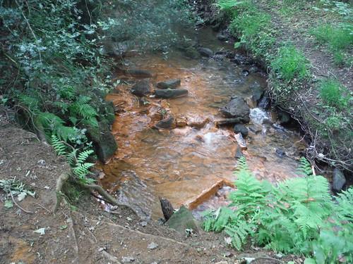 Ochre-coloured Stream, Ecclesall Woods