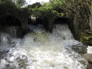 Full Flood