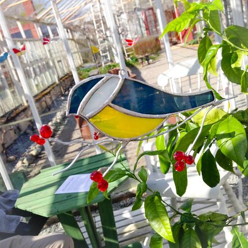 alsta gardens, örsundsbro, may 2015