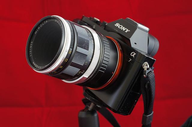 α7_MINOLTA MACRO ROKKOR-QF 50mm F3.5 5