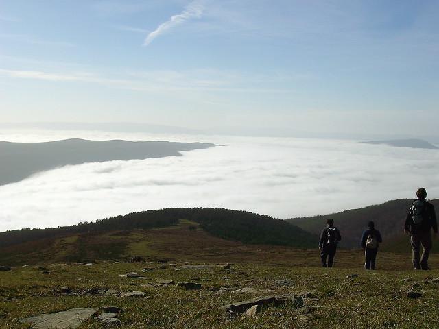 Hacia un mar de niebla