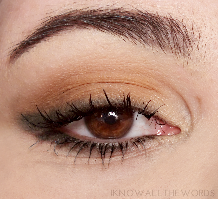 kat von d shade + light eye contour palette in sage swatches (2)