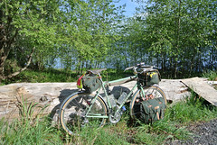 April Bicycle Camping day 1 - NFE on Hood Canal