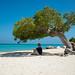Small photo of Aruba