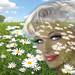 Daisies Hill Smile by ARTbyAngieBraun