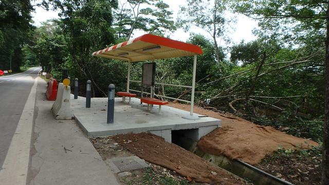 New bus stop built next to Punggol mangroves