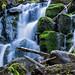 Ein kleiner Wasserfall in der Rhön