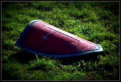 Shield on grass
