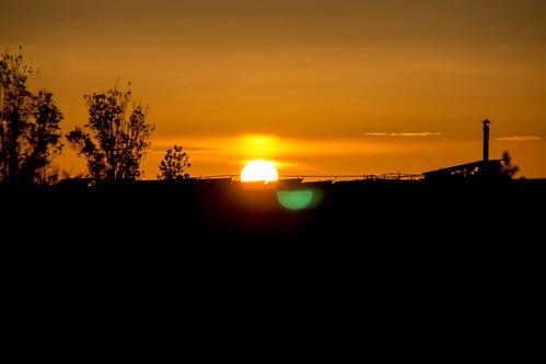 sunset sky sun tree canon eos soleil ciel arbre coucherdesoleil 600d extérieurs f1ijp vididstriking