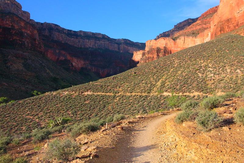IMG_5816 Plateau Point Trail