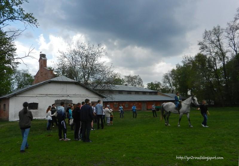 Полтавская область, Дубровский конный завод